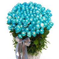 파란장미100송이바구니(예약상품)